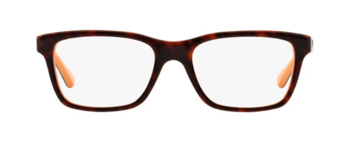 Ray-Ban Sonnenbrille 1536_3661 (48 Mm) Top Havana On Orange, 48